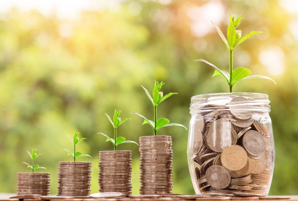 kasvua-rahaa-kehitysta